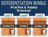 Practice & Assess Grammar: Differentiation BUNDLE!