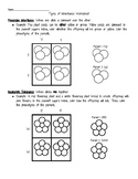 Types of Inheritance Coloring Worksheet (Codominance, Inco