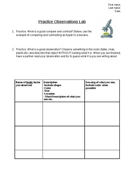 Practice Making Observations Lab Report