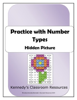 Practice with Number Types Hidden Picture - Great End-of-Year Activity!