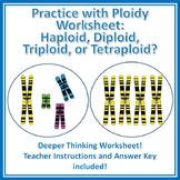 Practice with Ploidy Worksheet: Haploid, Diploid, Triploid, Tetraploid?