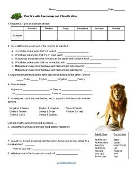 Practice with Taxonomy (KEY) by Biologycorner | Teachers ...