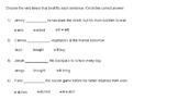 Practicing Verb Tense Printable - Bonus Google Slide Interactive