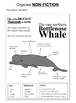 Practise Non Fiction Writing: The Blue Whale (7-11 years)