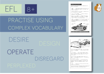 Practise Using Complex Vocabulary: Zoggy Drives A Car (EFL Work Pack) 8+