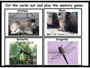 Prairie Animal Memory Game