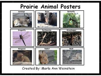 Prairie Animal Posters