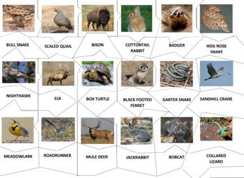 Prairie Animals JigSaw Puzzle