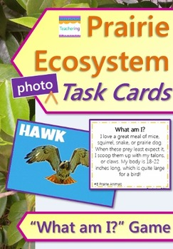 Prairie Ecosystem Task Cards with PHOTOS {PLUS a Food Web