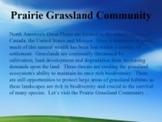 Prairie Grassland Community Habitats and Ecosystems PowerPoint