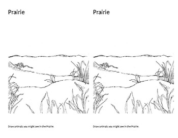 Prairies   (Notebook Pages)