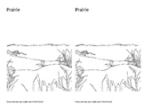 Prairies   (Notebook Pages)