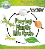 Praying Mantis Life Cycle Clipart {Zip-A-Dee-Doo-Dah Designs}