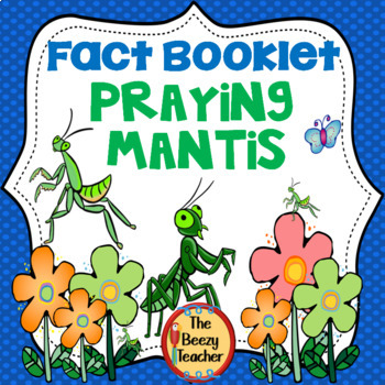 Praying Mantis Facts Booklet