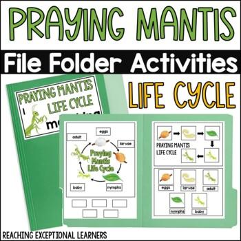 Praying Mantis Life Cycle File Folder Activity