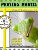 Informational Text {Praying Mantis} Close Reading & Text D