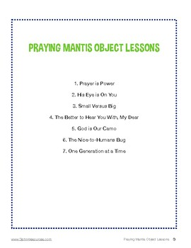 Praying Mantis Object Lessons