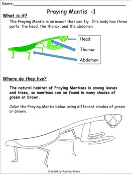 Praying Mantis Unit - Informational Text, Creative Writing, Differentiation