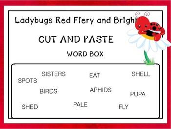 End of the Year/Preschool-2Ladybug Life Cycle Unit