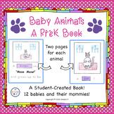 Baby Animals PreK Book