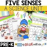 Pre-K Five Senses Science Unit