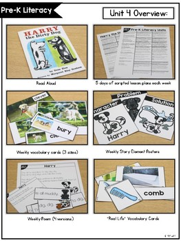 Pre-K (and Kindergarten) Literacy Curriculum FREE PREVIEW
