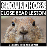 Pre-K (and Kindergarten) Literacy Curriculum FREE PREVIEW:
