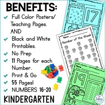 Pre-Kindergarten Math Numbers 16-20 Number of the Week Zoo Theme