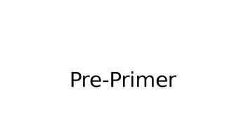 Pre-Primer Sight Word Flash