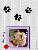 Pre-Primer Sight Word book - Kali Series (The Dog) colour
