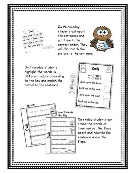 Pre-Primer - Week 5 - Owls - Weekly Reader, Interactive Notebook, Pocket Chart