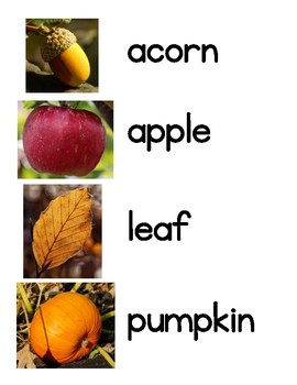 Fall Word Wall Words (Pictures First)