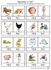 PreK-K Opposites Worksheets