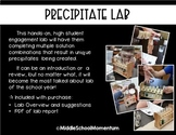 Precipitate Lab