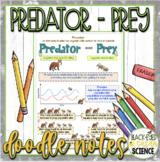 Predator-Prey Squiggle Sheets
