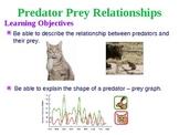 Predator Prey PowerPoint
