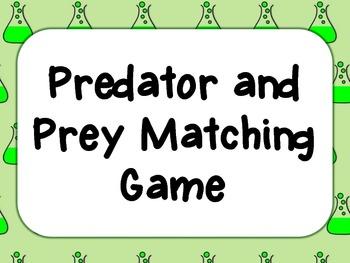 Predator and Prey Matching Game