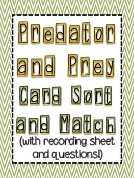 Predator and Prey Sort Cards with recording sheet and questions #TpTCyber17