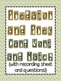 Predator and Prey Sort Cards with recording sheet and questions