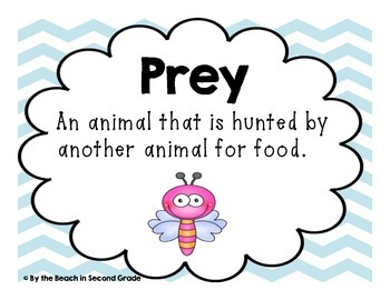 Predators and Prey JUST Vocabulary