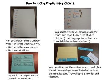 "Predictable Chart ""I am"" editable"