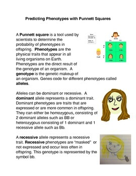 Predicting Phenotypes with Punnett Squares Common Core Activity