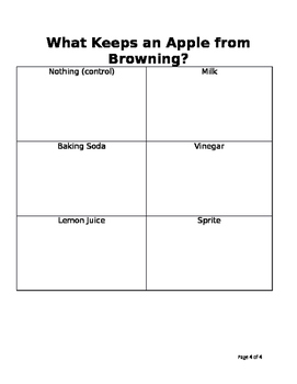 Prediction Experiment/Lesson - What Stops an Apple from Browning?