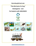 K-2 Life Cycle of Frog  -  ADD ADHD  -  Science