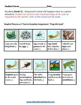 K - 2 Life Cycle of a Frog - Gifted and Talented  -  Science