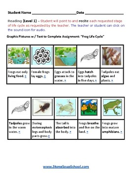 K - 2  Life Cycle of Frog -  Psychiatric Disorders  - Science