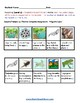 K - 2  Life Cycle of Frog -  Mental Health or Medical Conditions  - Science