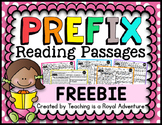 Prefix Reading Passage FREEBIE