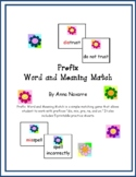Prefix Word and Meaning Match