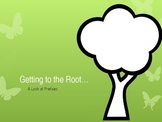 Prefixes- Getting to the Root